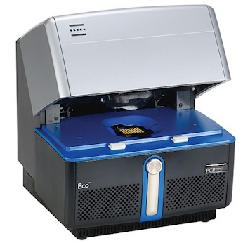Cycler Real Time PCR