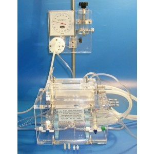 Baie de organe BASIC 4 camere