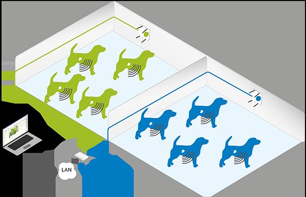 Sistem de telemetrie implantabil pentru animale mari