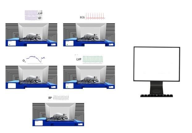 Sistem de Telemetrie Millar